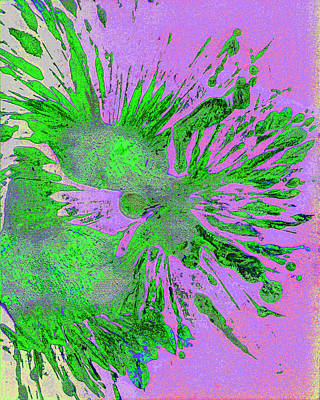 Digital Art - Imprints Of Nature Series 1751mp1ifdsisrg73.m3439.m71.eq.i by Kris Haas