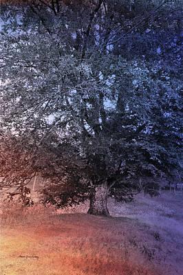 Photograph - In A Dream by Randi Grace Nilsberg
