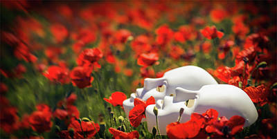 Floral Photograph - In A Field Of Poppies - Red Poppy Art by Wall Art Prints