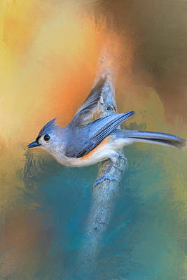 Tufted Titmouse Photograph - In A Flash by Jai Johnson