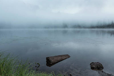 Photograph - In A Fog by Belinda Greb