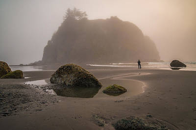 Olympic National Park Photograph - In A Fog by Kristopher Schoenleber