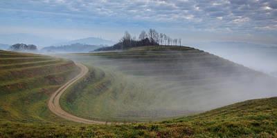 Vineyards Photograph - In A Land Far, Far Away... by Davorin Mance