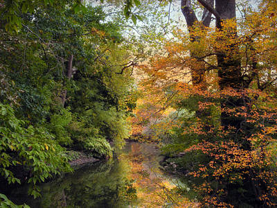 Autumn Foliage Photograph - In A Mirror by Jessica Jenney