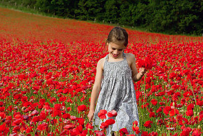 Photograph - In A Sea Of Poppies by Keith Armstrong