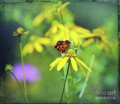 Photograph - In A World Of Yellow by Kerri Farley