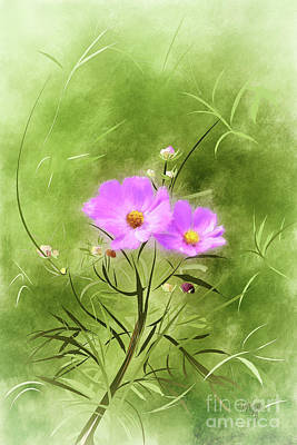 Digital Art - In An August Breeze by Lois Bryan