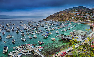 Photograph - Catalina Avalon Harbor by David Zanzinger