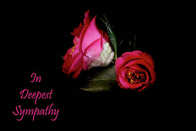 Photograph - In Deepest Sympathy Greeting Card by Kay Brewer