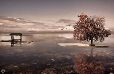 Symbolism Photograph - In Dreams by Lourry Legarde