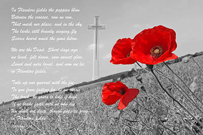 Flower Memorial Photograph - In Flanders Fields by Gill Billington