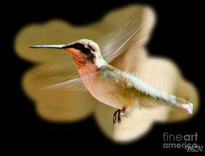 Photograph - In Flight by Barbara S Nickerson