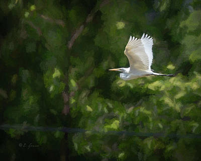 Plume Mixed Media - In Flight by Erwin Spinner
