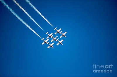 Photograph - In Formation by Wayne Wilton