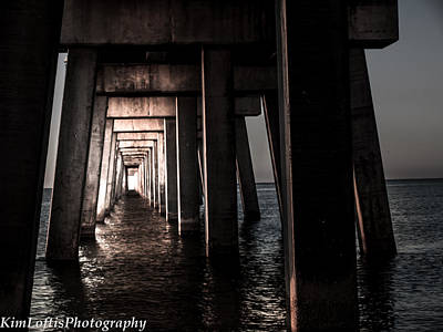 Photograph - In From The Darkness  by Kim Loftis
