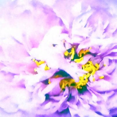 Timeless Mixed Media - Dream Of Full Bloom  by Stacey Chiew