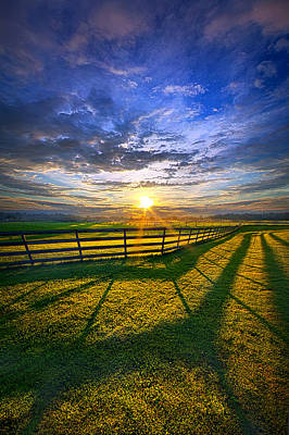 Photograph - In Harmony by Phil Koch