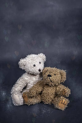 Sitting Bear Photograph - In Love by Joana Kruse