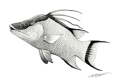 Hog Fish Art Hand Made  Original