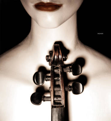 Violin Photograph - In Portrait Notation  by Steven Digman