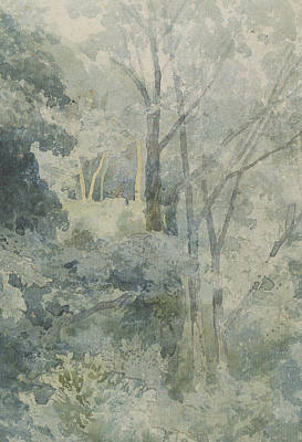 Woodland Drawing - In Rokeby Park by John Sell Cotman