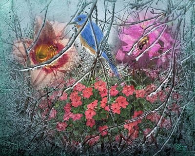 Photograph - In Search Of Spring by Jim Ziemer