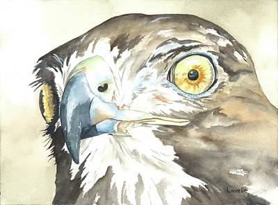 Animal Portrait Painting - In Sight by Kimberly Lavelle