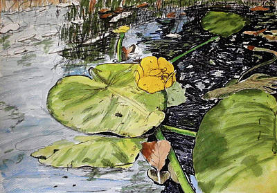 Lillies Drawing - In Summer Day by Maria Woithofer