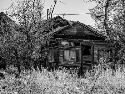 Haunted Shack Photograph - In The Backyard by Marnie Patchett
