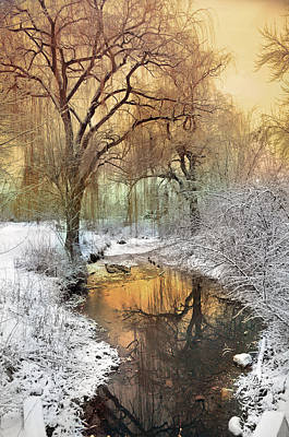 Photograph - In The Calm Of Winter by Tara Turner