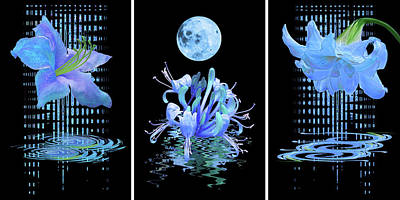Photograph - In The Cool Of The Night Blue Floral Abstract Triptych by Gill Billington