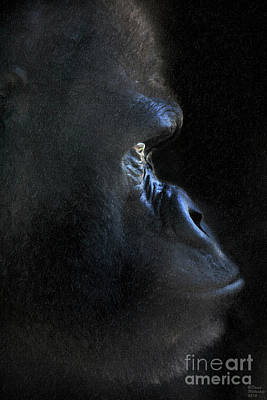 Mixed Media - Gorilla In The Dark Large Canvas Art, Canvas Print, Large Art, Large Wall Decor, Home Decor, Photogr by David Millenheft