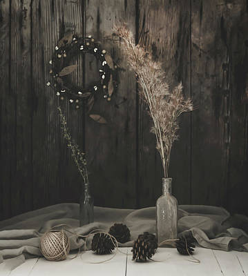 Pine Cones Photograph - In The Darkness by Kim Hojnacki