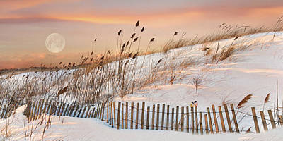 Photograph - In The Dunes by Robin-Lee Vieira