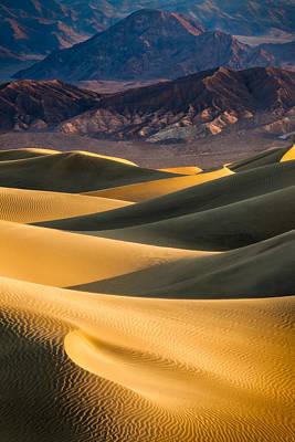 Amargosa Photograph - In The Dunes by Thorsten Scheuermann