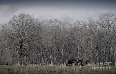 Photograph - In The Field by Liz Masoner