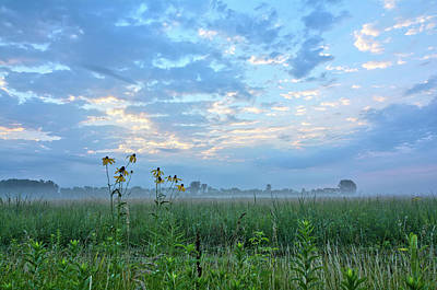 Photograph - In The Fog by Bonfire Photography