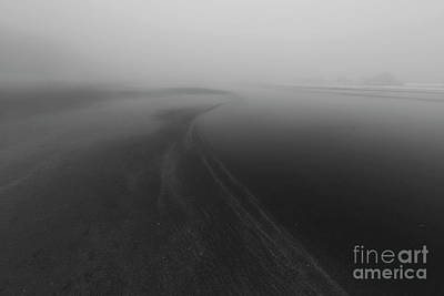 Central Oregon Coast Photograph - In The Fog by Masako Metz