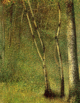 In The Forest At Pontaubert Print by Georges Pierre Seurat