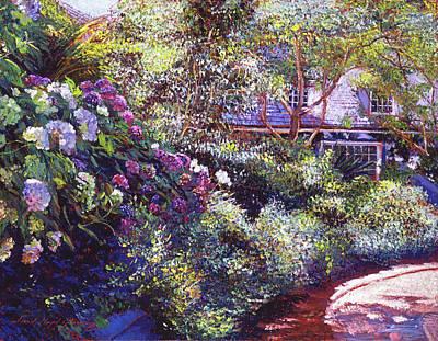 Shrubbery Painting - Malibu Hydrangeas by David Lloyd Glover