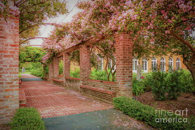 Photograph - In The Gardens by Kathleen K Parker