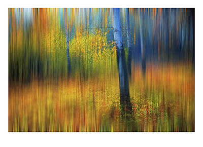In The Golden Woods. Impressionism. Ltd Edition Of Only 10 Fine Art Giclee Prints Original