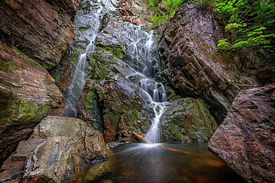 Photograph - In The Gorge At Angel Falls by Rick Berk