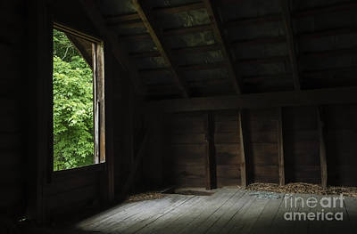 Photograph - In The Hayloft by Debra Fedchin
