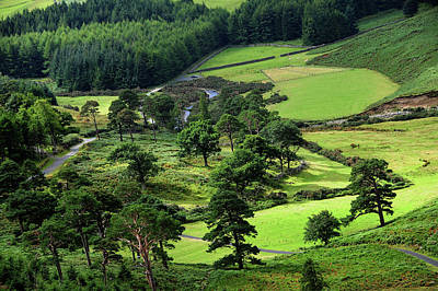 Photograph - In The Heart Of Emerald Valley. Wicklow. Ireland by Jenny Rainbow