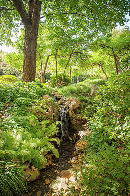 Photograph - In The Heart Of Japanese Garden 1 by Jenny Rainbow