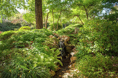 Photograph - In The Heart Of Japanese Garden by Jenny Rainbow