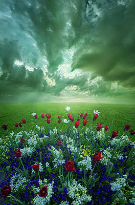 Photograph - In The Hearts Of The Children by Phil Koch