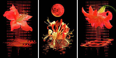 Photograph - In The Heat Of The Night Red Floral Abstract Triptych by Gill Billington