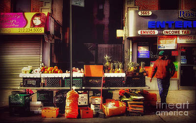 Photograph - In The Heights by Miriam Danar